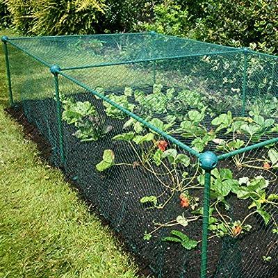 Invernadero / Túnel de cultivo / Jaula de protección con malla anti-mariposas y pájaros: Cultive y proteja coles, ensaladas, hierbas y otros vegetales (200 x 100 x 62.5cm): Amazon.es: Jardín