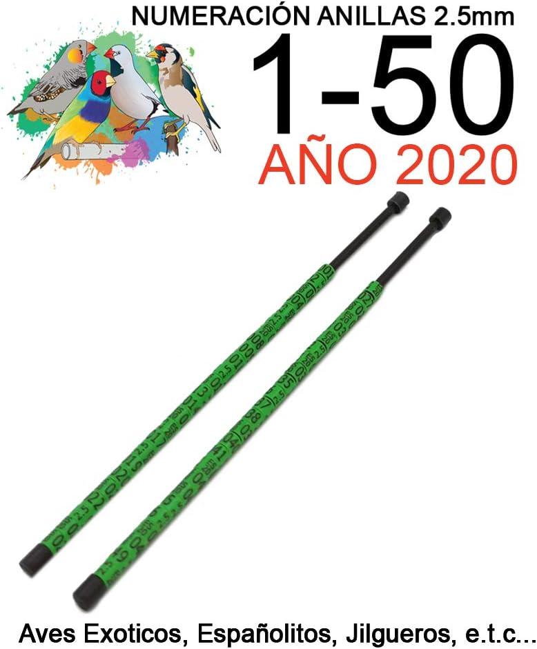 nestQ 50 Anillas Canarios Españolitos Jilgueros Exotiocs 2020 Color Verde Federativo Policromo Grabado Laser Cerradas 2.5 mm Numeradas con Año Marcado 2 Tiras con Numeración de 1-50