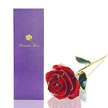Amazon Com Rose Flower Red Rose Econoled Best Gift For Valentine S
