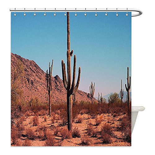 My Jeff Hardy Costume (Liguo88 Custom Waterproof Bathroom Shower Curtain Polyester Saguaro Cactus Decor Grown Prominent Cacti with the Spines Hardy Plants Clear Sky landscape Picture Decor Brown Blue Decorative bathroom)