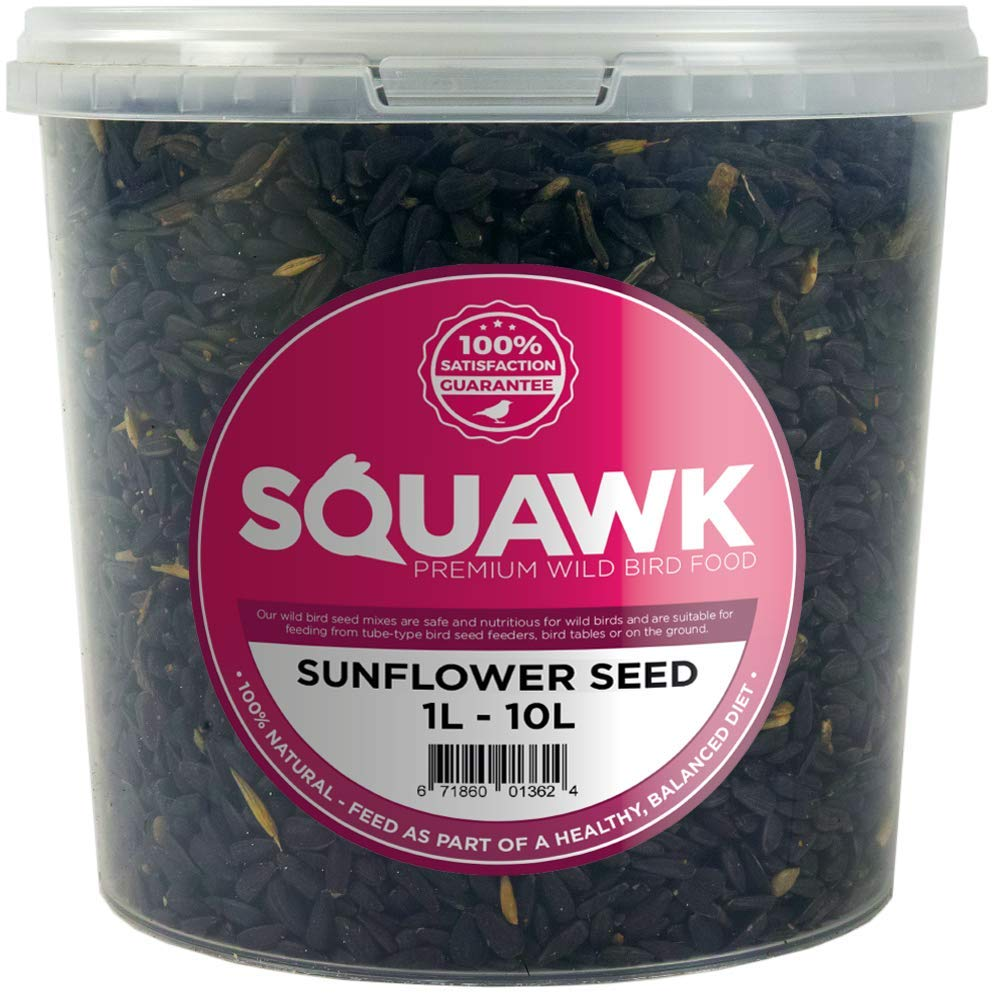 SQUAWK Black Oil Sunflower Seeds - Rich Feed Wild Garden Bird Food (1L Tub)