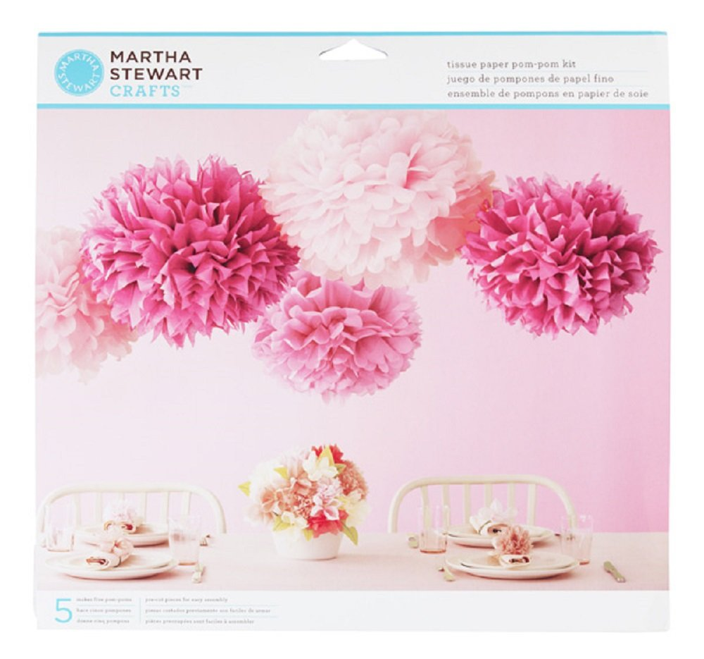 Amazon martha stewart crafts pom poms pink 2 sizes arts amazon martha stewart crafts pom poms pink 2 sizes arts crafts sewing dhlflorist Images