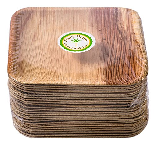 Pure Palm Planet Friendly Plates; Upscale Disposable Dinnerware; All-Natural, Eco-Friendly, Compostable Plateware (8.5
