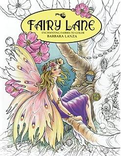 Amazon Com Creative Haven Enchanted Fairies Coloring Book Adult