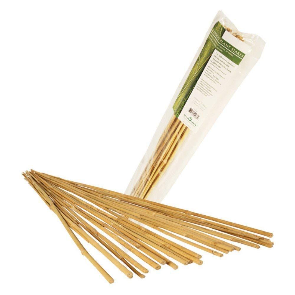 Pack of 25 Hydrofarm HGBB2 2 Natural Bamboo Stake