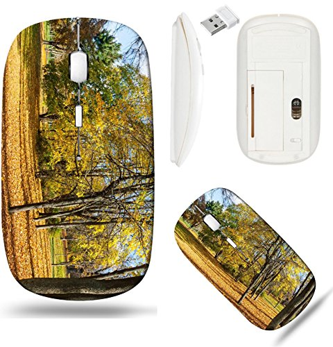 Liili Wireless Mouse White Base Travel 2.4G Wireless Mice with USB Receiver, Click with 1000 DPI for notebook, pc, laptop, computer, mac book Collection of Beautiful Colorful Autumn Leaves green yello