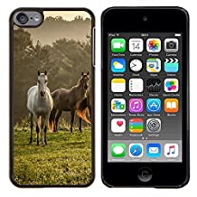 # Cellphone Hard Case PC Protective Cover Shell Case forApple iPod Touch 6 6th Touch6 # Horses Nature Meadow Fog Mist Field Mustang # Gift Phone Case Housing #
