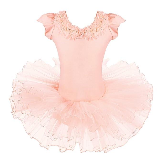 5fcf45340fb9 Amazon.com  BAOHULU Leotards for Girls Ballet Dance Tutu Skirted ...
