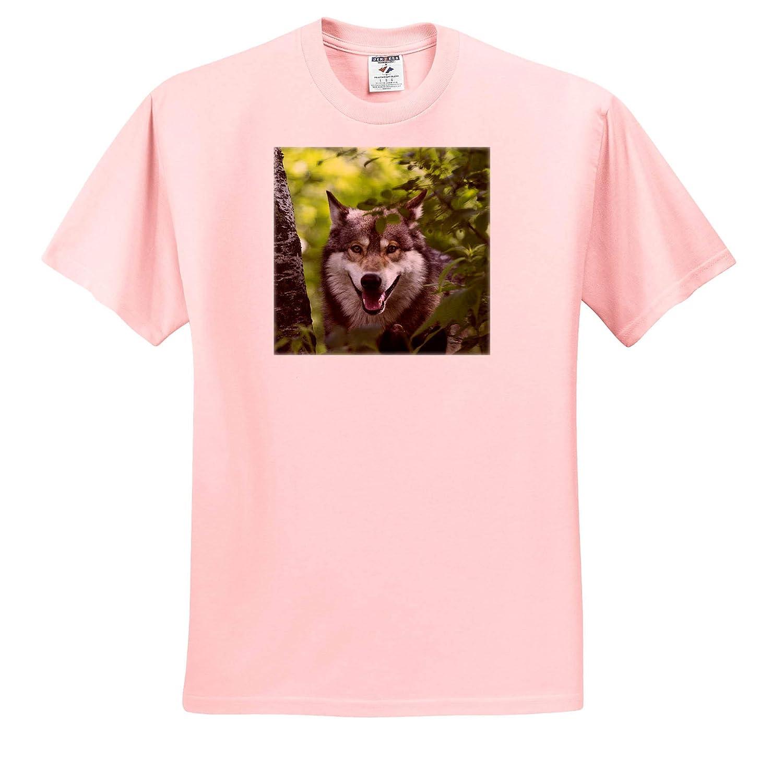 Sandstone ts/_314877 Adult T-Shirt XL USA 3dRose Danita Delimont Wolves Minnesota Wolf