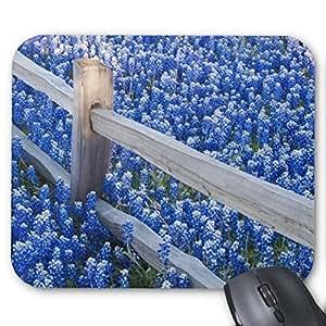 Bluebonnets along fenceline mouse pad