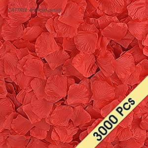 CATTREE Rose Petals, 3000 PCS Artificial Petals Silk Wedding Flower Decoration 4