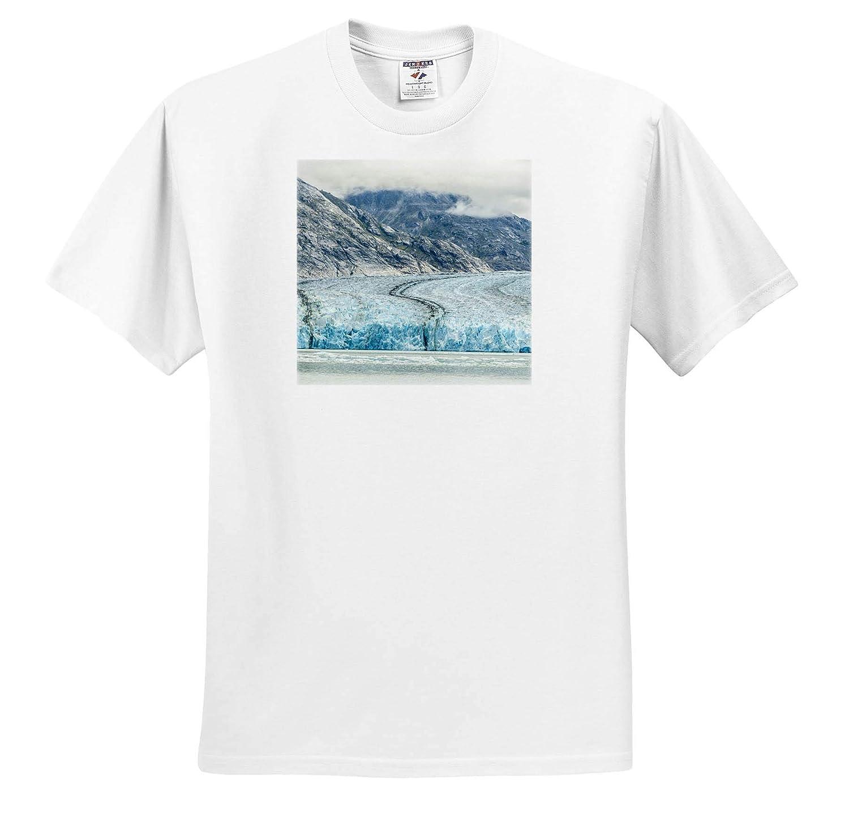 Alaska Alaska - Adult T-Shirt XL Endicott Arm Overview of Dawes Glacier USA ts/_314446 3dRose Danita Delimont