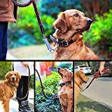 Leather-Dog-LeashComsun-Braided-Pet-Training-Leather-Lead-Belt-43ft-Long-08-Inch-Wide-for-Medium-Large-Dogs-Up-To-220lbs-With-Buffer-Spring-Black