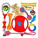 Dog Toys for Aggressive chewers Squeaky Interactive Toys Set 10 Pack 100% Safe Durable Non-Toxic Toys for Small Medium Dog by FONPOO