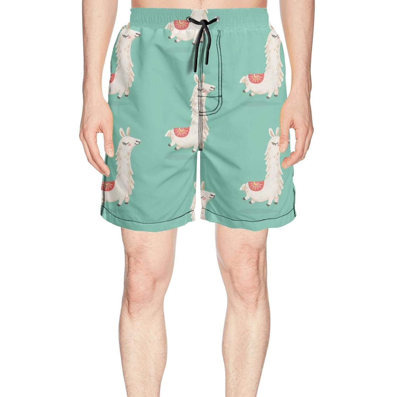 Mens Cute Llama Alpacas Love Pattern Swim Trunks Surfing Beach wear Casual Sport Boardshorts