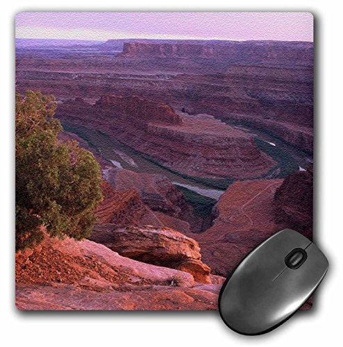 3dRose Sandy Mertens Utah - Canyon Lands Dead Horse Point State Park - MousePad (mp_156528_1)