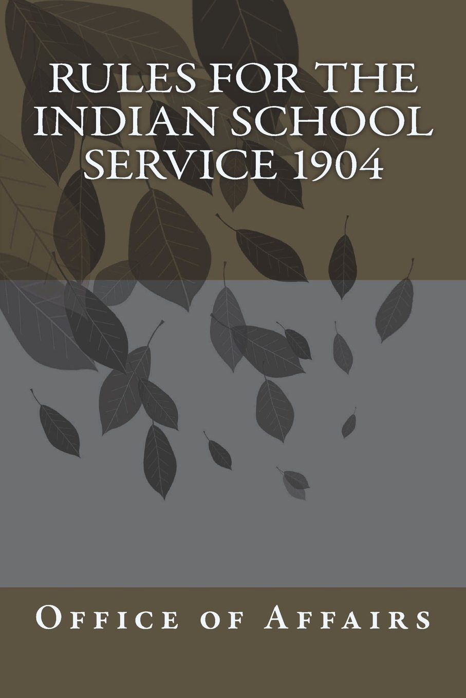 Rules for the Indian School Service 1904 ebook