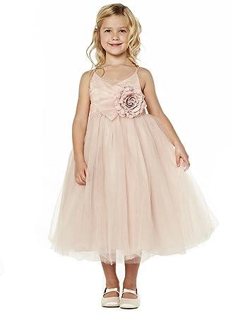53dedd08e27 Mrprettys Blush Pink Tulle Tutu Flower Girls Dress Little Girls Dress