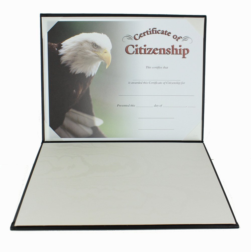Padded Blue Certificate Holder With Acetate Cover - Pack of 3 by Awards and Gifts R Us (Image #2)