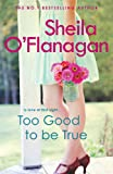 Too Good To Be True: A feel-good read of romance and adventure