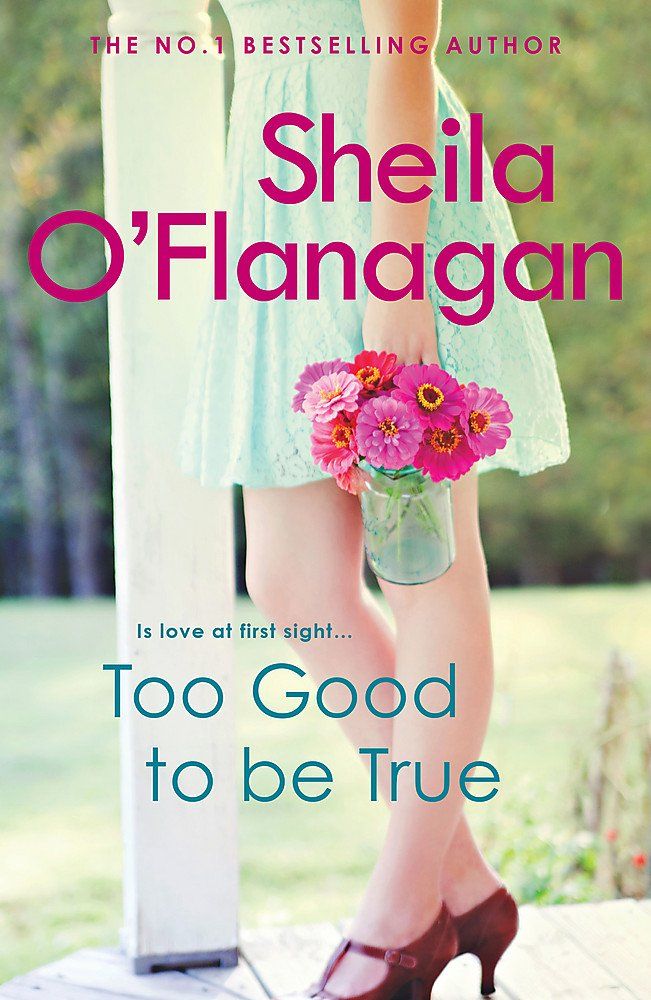 Download Too Good To Be True ebook