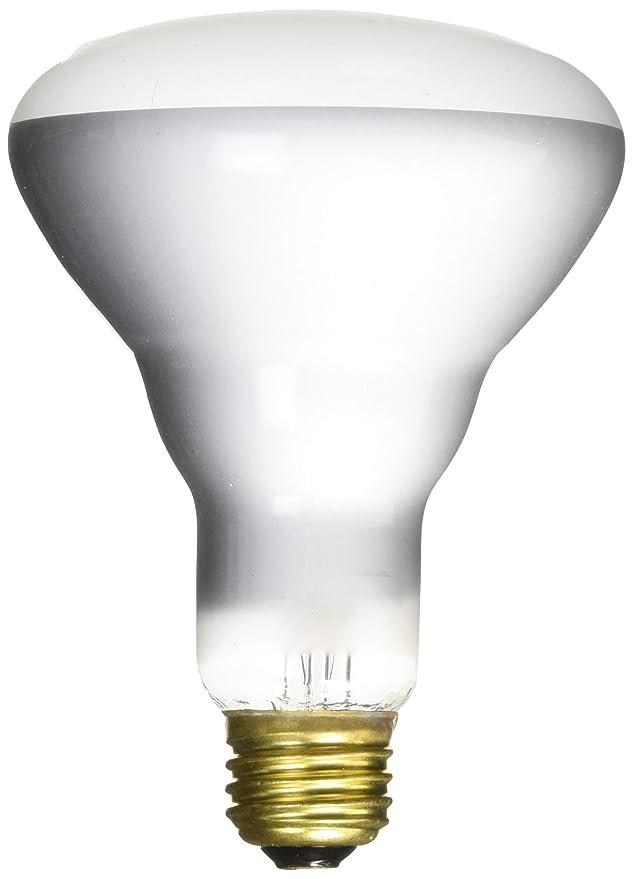G E Lighting 28824 0 GE 65R30 FLD Light - Incandescent Bulbs - Amazon.com