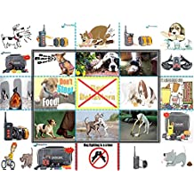 Rechargeable Small Dog (3 ~ 12 lbs) Remote Training 10 level Shock Vibrate Collar (GT-211S-350W)