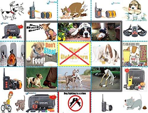 Aetertek AT-919C-2 600 Yard 18 Level 2 Dogs Training Anti Bark & Waterproof Collar by Aetertek