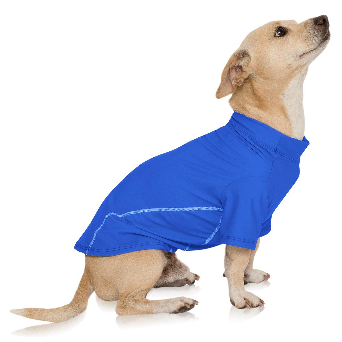 PlayaPup Pro Sun Protective/Lightweight Dog Shirts, Blue, 2XL by PlayaPup