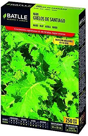 Semillas Batlle - Nabo Grelos Blanco De Lugo Caja 250G: Amazon.es ...