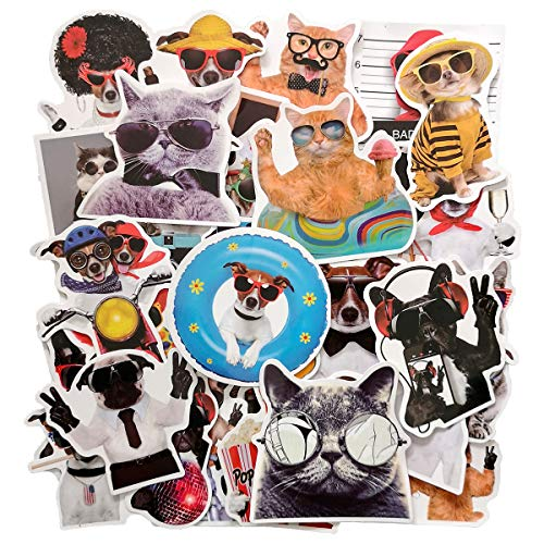 Funny Dog and Cat Stickers, Pet with Sunglasses Sticker Decal for Laptop, Water Bottles, Cars, Teens, Men, Women, Kids, Girls, 38pcs Vinyl Waterproof Sticker Pack, No Repeat(Dog and Cat Stickers)