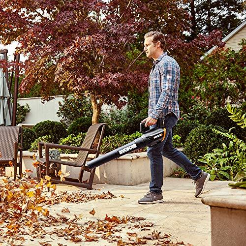 Worx Wg958 14 Inch 40v 4 0ah Wg779 Cordless Lawn Mower