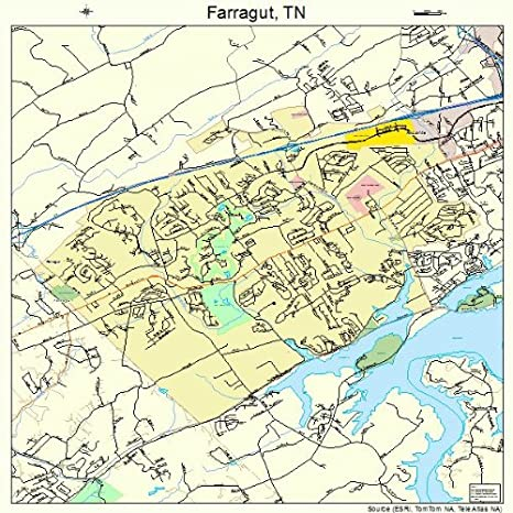 Amazon.com: Image Trader Large Street & Road Map of Farragut ...