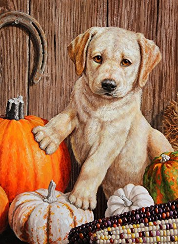 Yellow Labrador Retriever Gifts And Collectibles