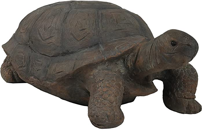 Amazon Com Sunnydaze Todd The Tortoise Garden Statue Large