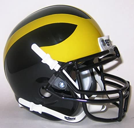7a45a3b8634 Image Unavailable. Image not available for. Color  Parkland Matadors High  School Mini Helmet ...