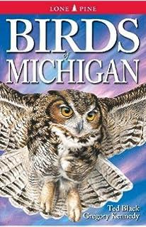 National geographic field guide to birds michigan mel baughman birds of michigan publicscrutiny Gallery