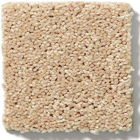 Koeckritz 12 x15 Melted Butter 30 oz Durable Cut Pile Area Rug. Multiple Sizes and Shapes to Choose from.