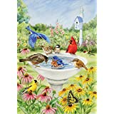 Toland - Birdy Dippin' - Decorative Spring Summer Cute Bird Bath Flower USA-Produced Garden Flag