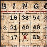 Printfinders Bingo by Aaron Christensen Canvas Art, 30-Inch by 30-Inch
