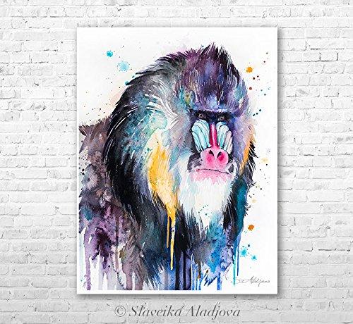 Mandrill Animal - Mandrill watercolor painting print by Slaveika Aladjova