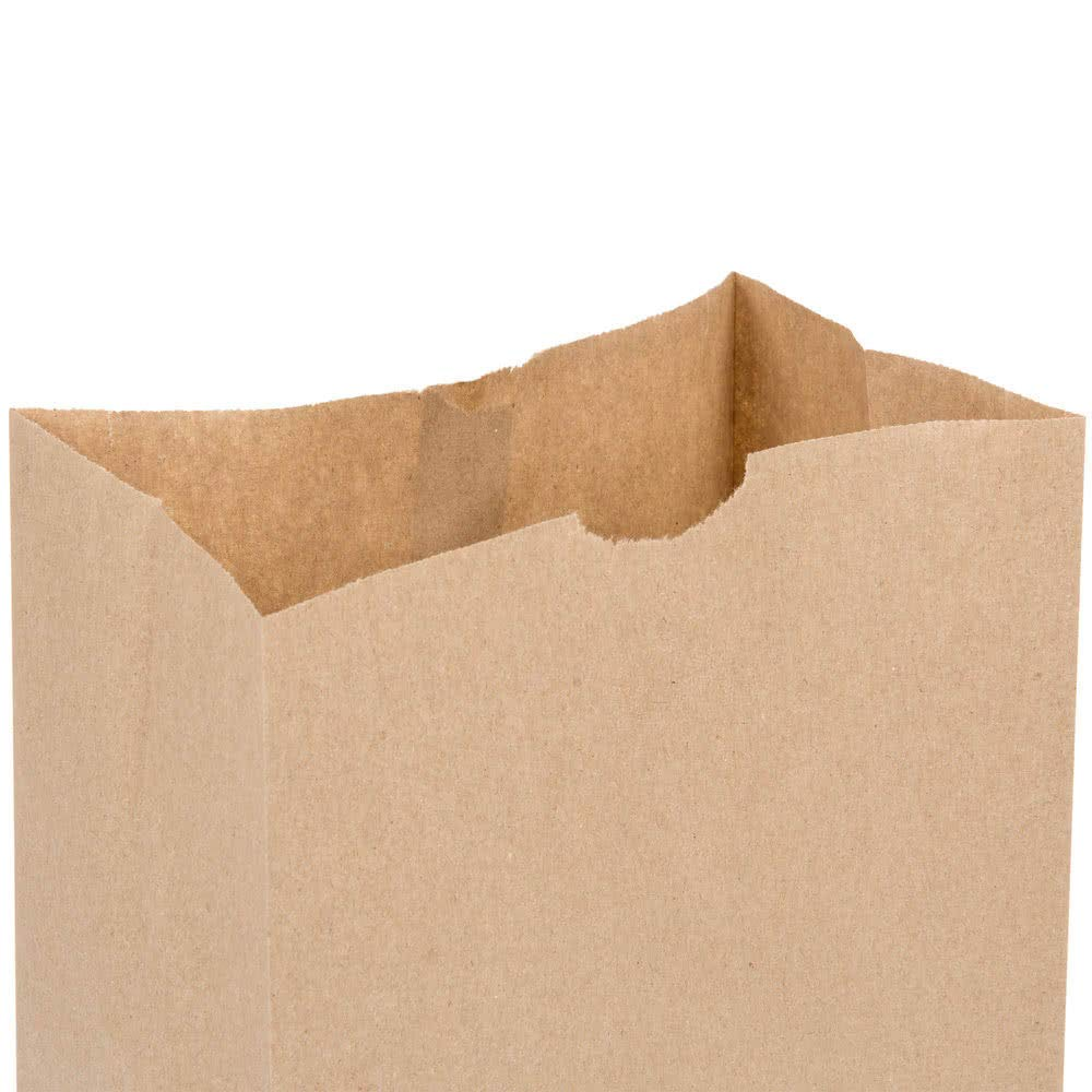 Fit Meal Prep 125 Pack Heavy Duty Kraft Paper Bags 16 x 8 x 5.5 20 LB Grocery Lunch Retail Shopping Durable Natural Brown Barrel Sack