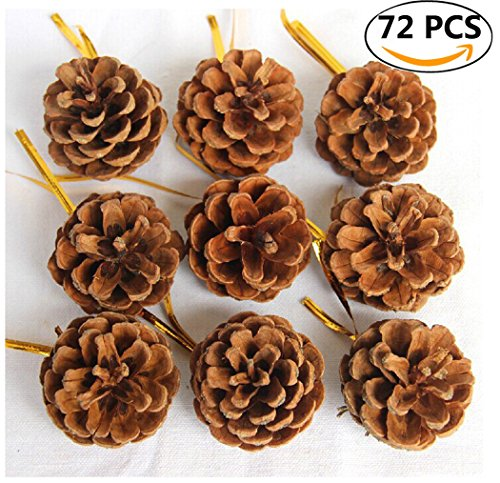 Christmas Pine Cones, Coxeer 72Pcs Christmas Hanging Pinecone Ornaments Xmas Tree Ornaments Party Supplies (Craft Xmas Ideas)