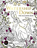Best Teenager Books - Watership Down: The Colouring Book Review