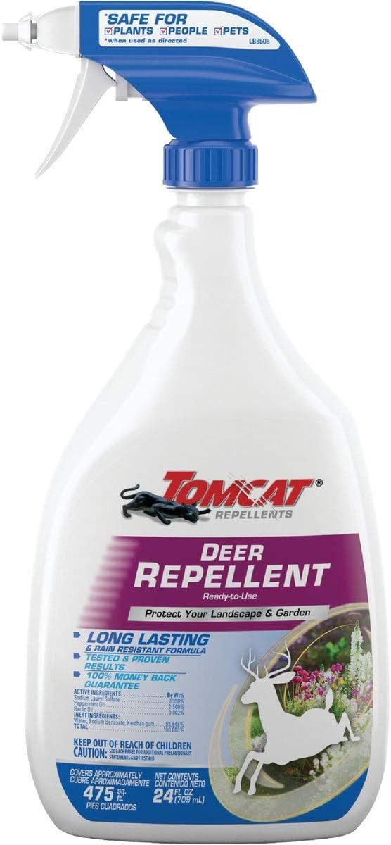 Tomcat Repellents Deer Repellent Ready-to-Use1 Spray - Repels Deer and Rabbits, Contains Essential Oils, Protects Garden and Landscape, No Stink, Rain-Resistant, 24 fl. oz.