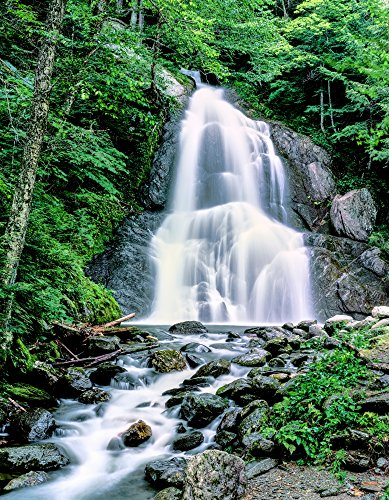 Posterazzi Waterfall in a Forest Moss Glen Falls 3873 Route 100 Reservation State Park Granville Vermont USA Poster Print by Panoramic Images (14 x 11) Varies