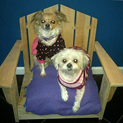 Designed For Outdoors Cypress Adirondack Pet Chair – Small