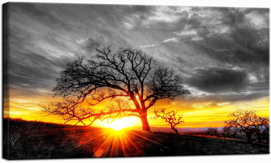 Nachic Wall Modern Wall Art Decor Black and White Tree at Gold Sunset Picture Canvas Prints Nature Landscape Painting Artwork for Living Room Bedroom Decoration Framed Ready to Hang 20x36