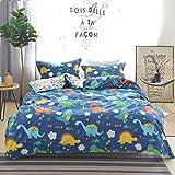 Warm Embrace 100 Percent Cotton Duvet Cover Set Dinosaur Pattern Blue Boys Bedding,Duvet cover and pillowcases,Full Queen Size,3 Piece