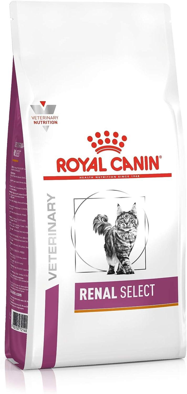 Royal Vet Feline Renal Select 4Kg 4000 g: Amazon.es: Productos para mascotas